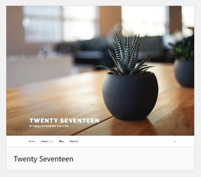 Twenty Seventeen thumbnail